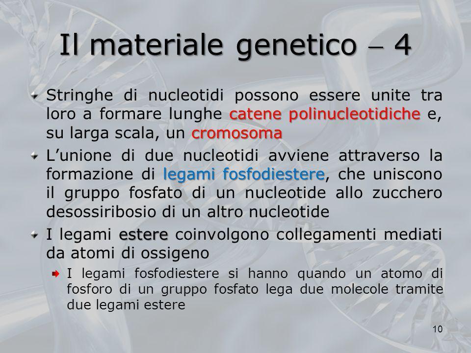 Il materiale genetico  4