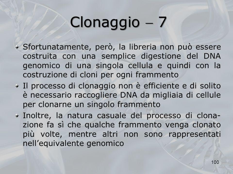 Clonaggio  7