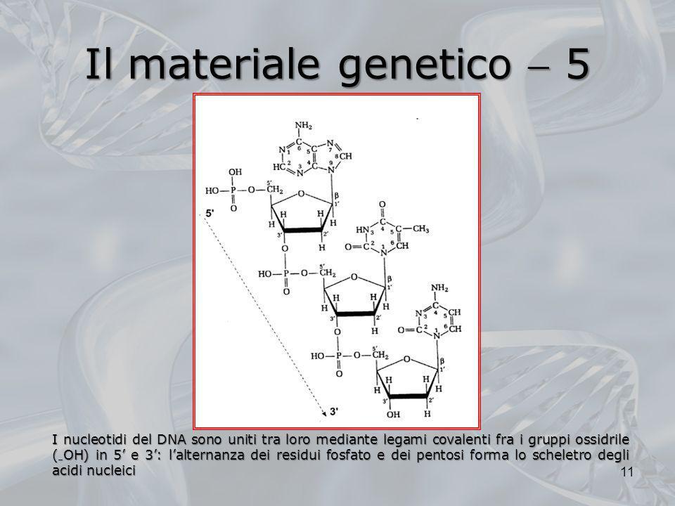 Il materiale genetico  5