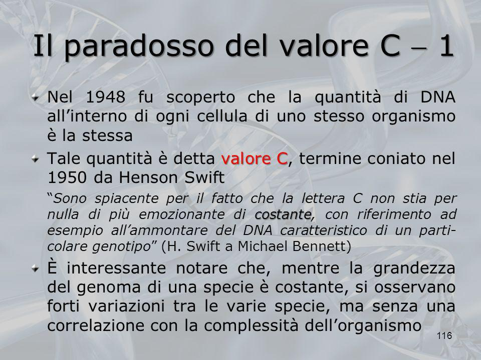 Il paradosso del valore C  1