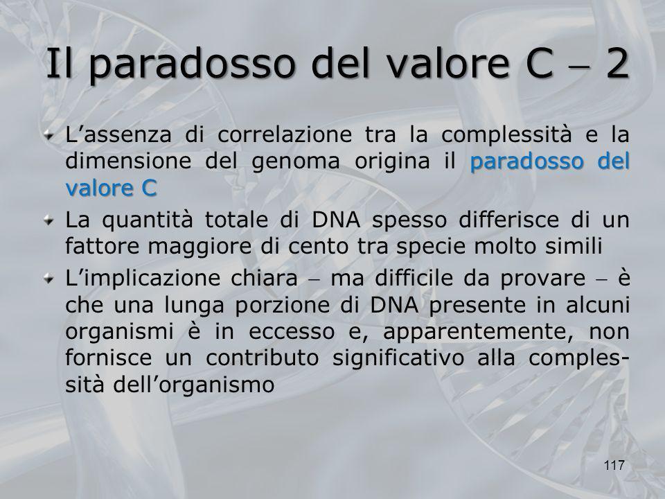 Il paradosso del valore C  2