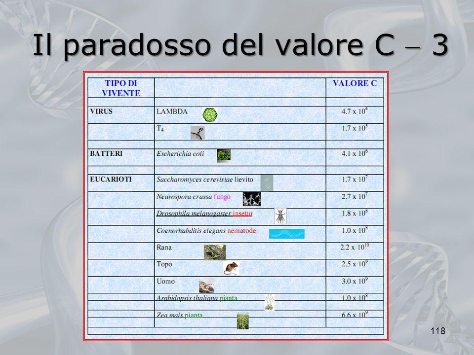 Il paradosso del valore C  3