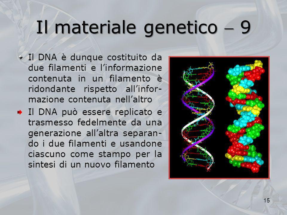 Il materiale genetico  9