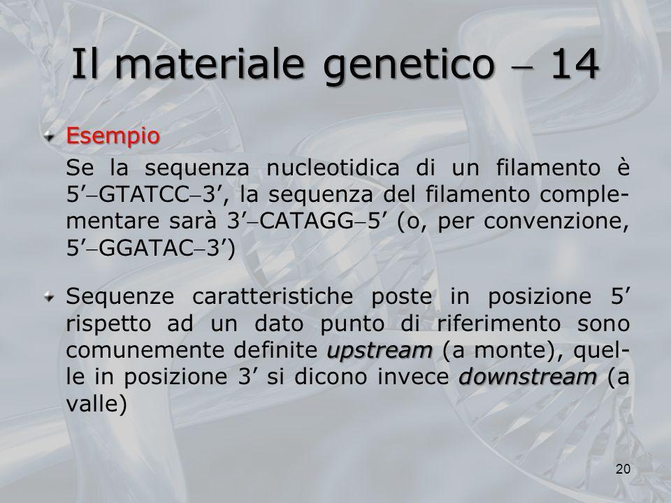 Il materiale genetico  14