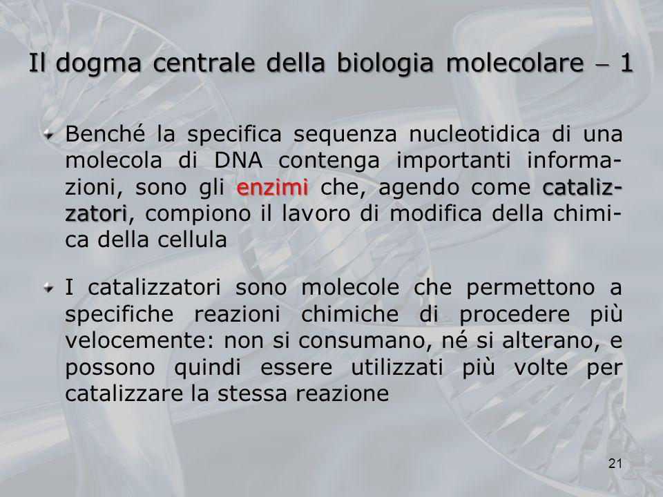 Il dogma centrale della biologia molecolare  1