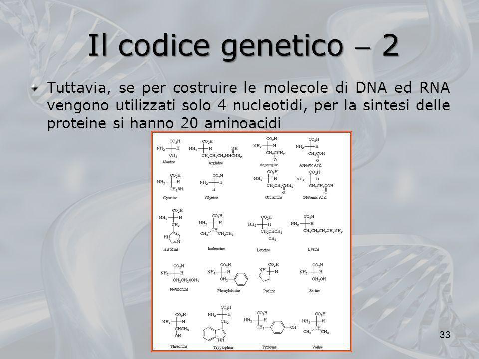 Il codice genetico  2