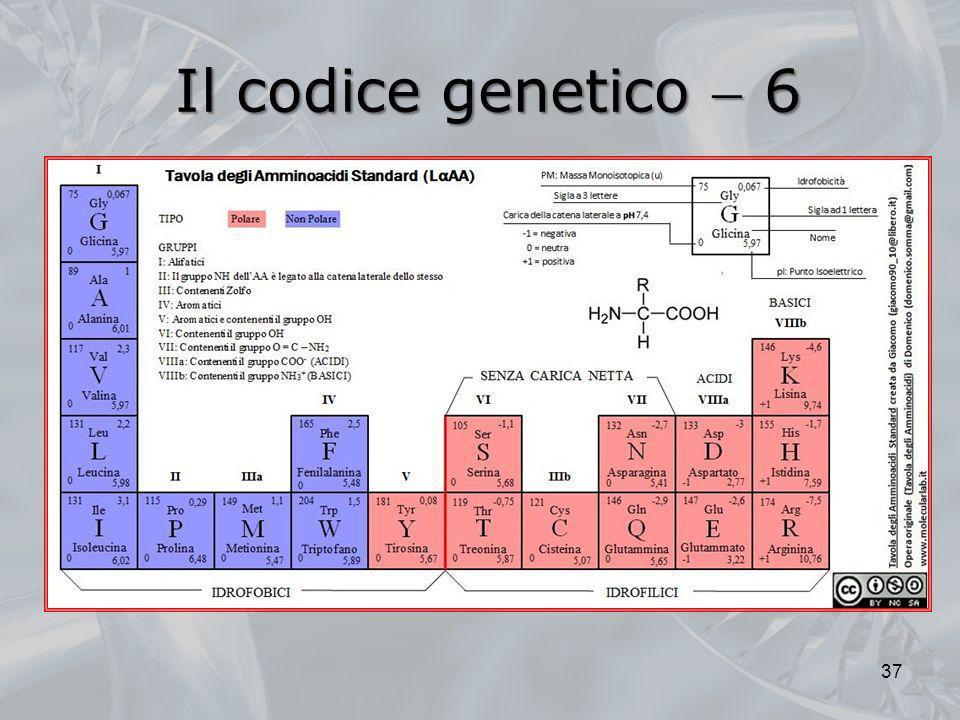 Il codice genetico  6