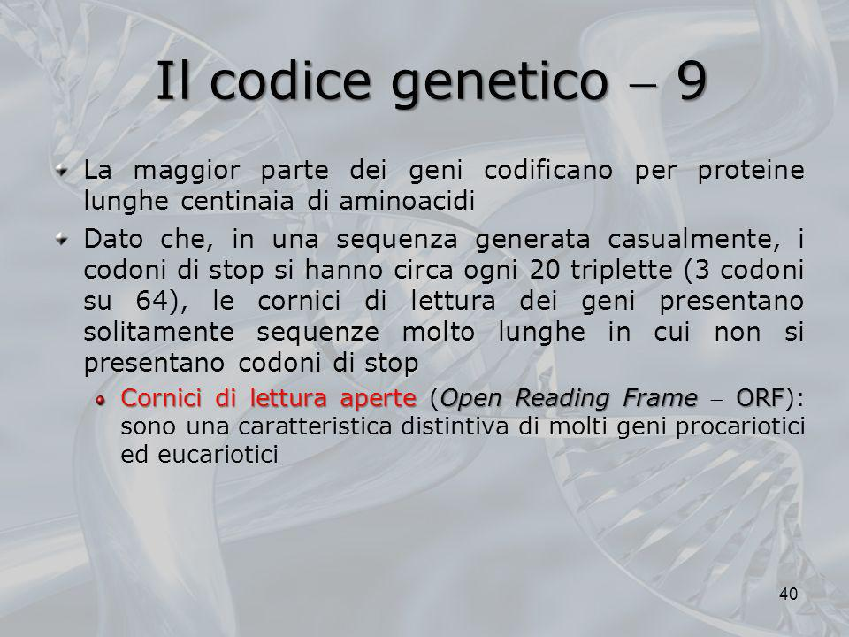 Il codice genetico  9La maggior parte dei geni codificano per proteine lunghe centinaia di aminoacidi.