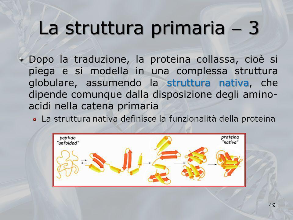 La struttura primaria  3