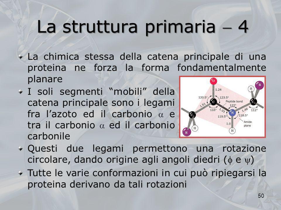 La struttura primaria  4