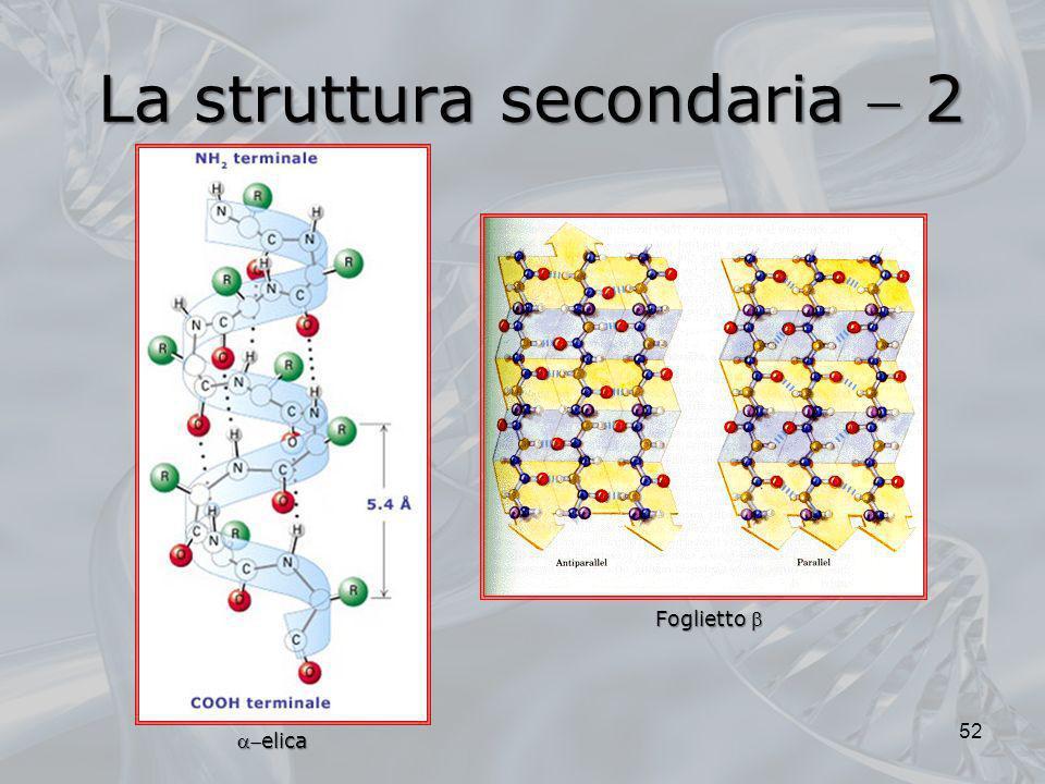 La struttura secondaria  2