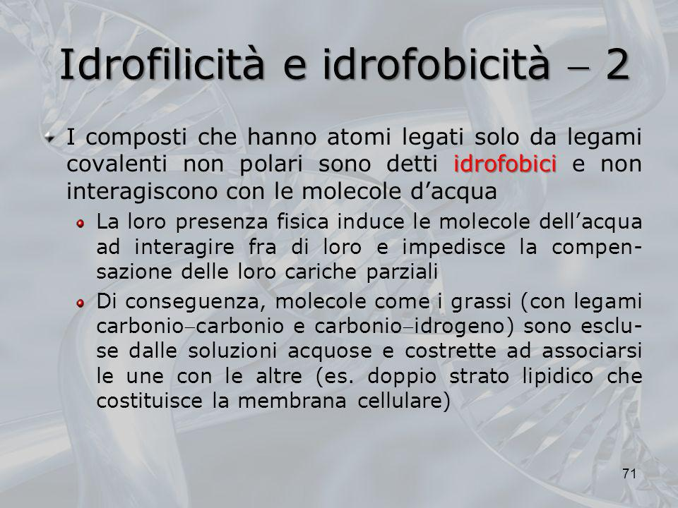 Idrofilicità e idrofobicità  2