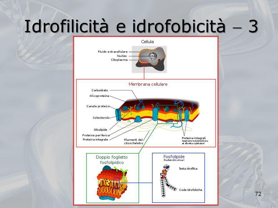 Idrofilicità e idrofobicità  3