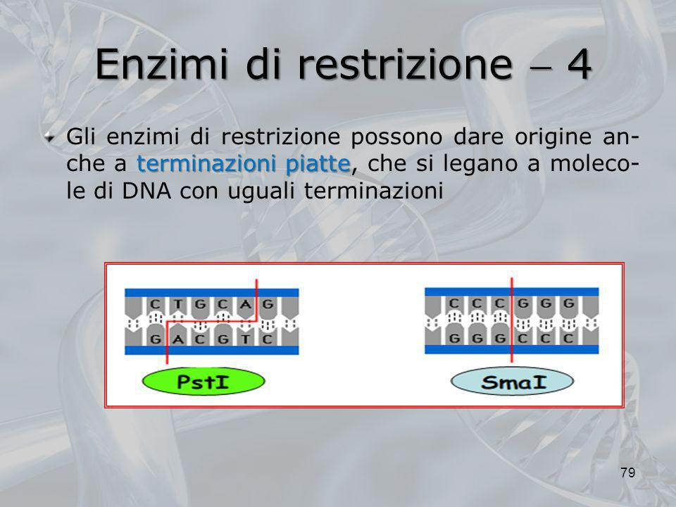 Enzimi di restrizione  4
