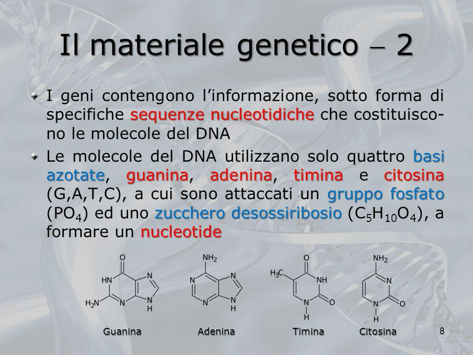Il materiale genetico  2