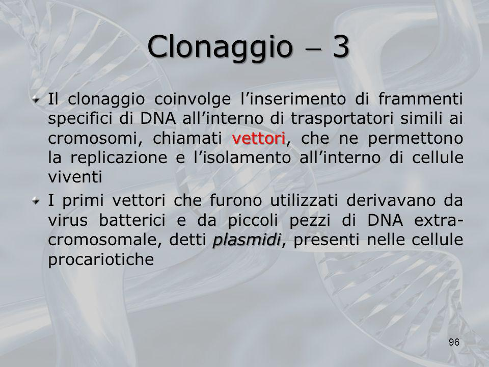 Clonaggio  3