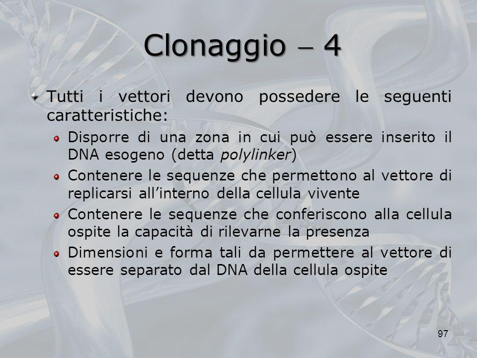 Clonaggio  4 Tutti i vettori devono possedere le seguenti caratteristiche: