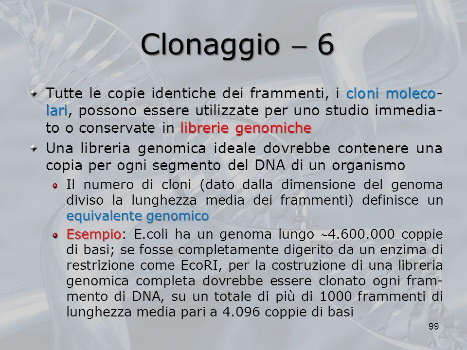 Clonaggio  6