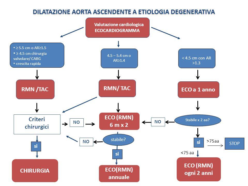 DILATAZIONE AORTA ASCENDENTE A ETIOLOGIA DEGENERATIVA