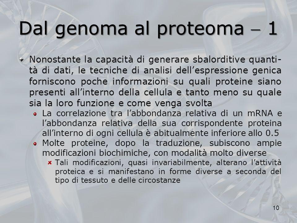 Dal genoma al proteoma  1