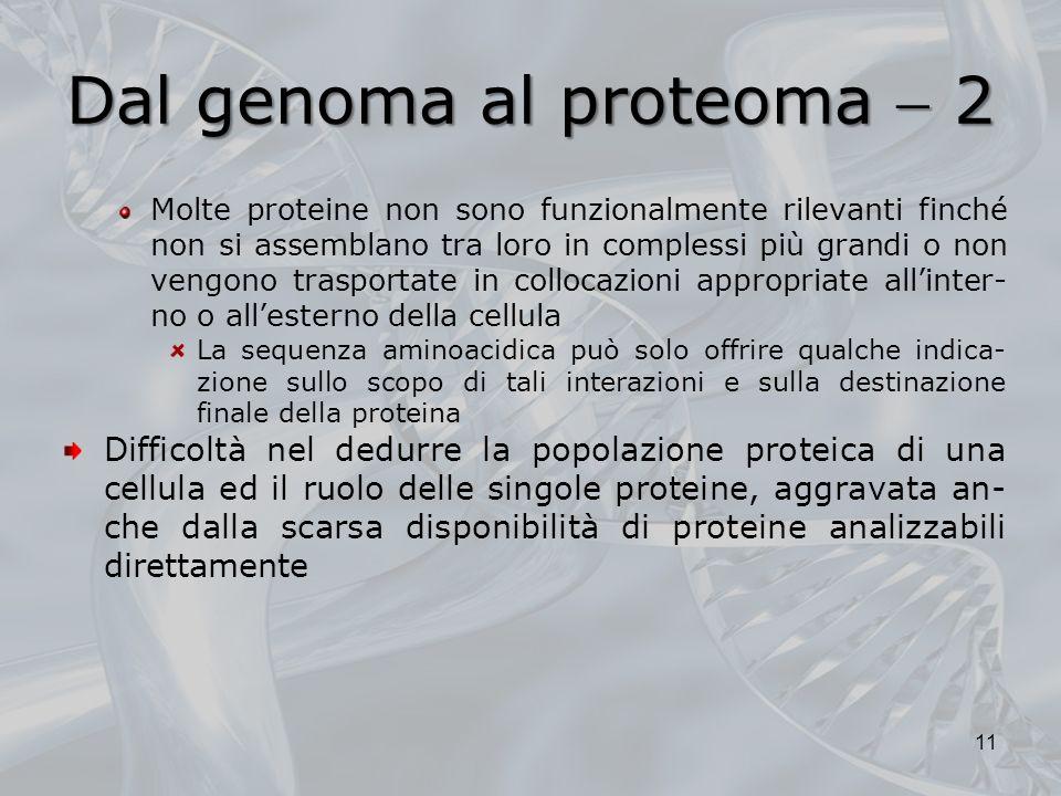 Dal genoma al proteoma  2
