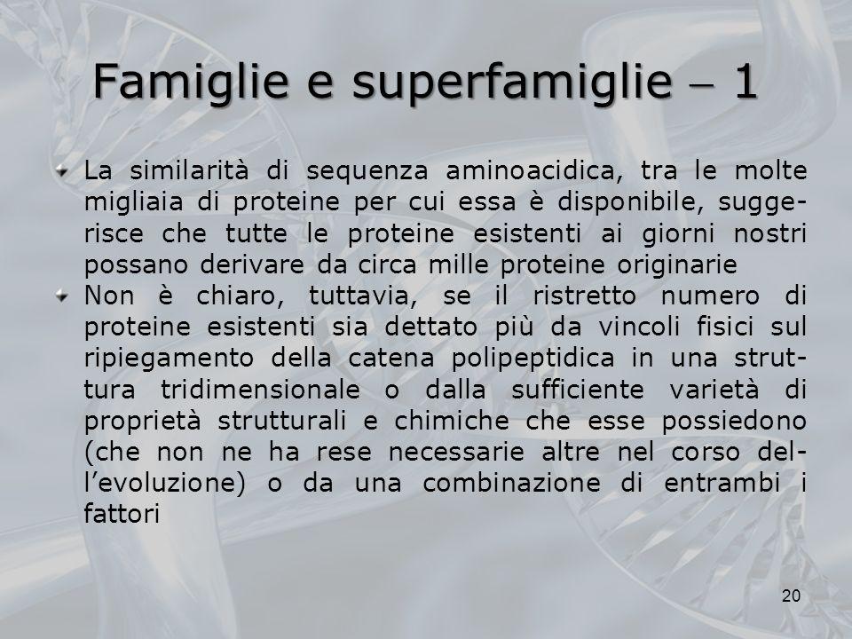 Famiglie e superfamiglie  1