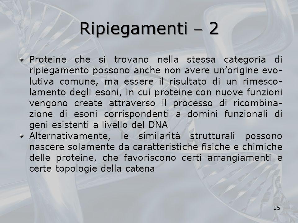 Ripiegamenti  2