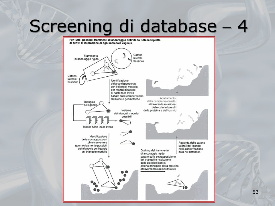 Screening di database  4