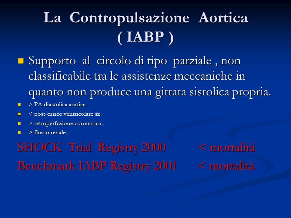 La Contropulsazione Aortica ( IABP )