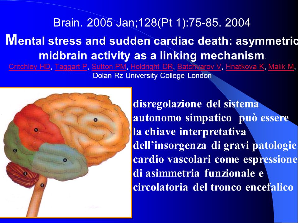 Brain. 2005 Jan;128(Pt 1):75-85. 2004 Mental stress and sudden cardiac death: asymmetric midbrain activity as a linking mechanism. Critchley HD, Taggart P, Sutton PM, Holdright DR, Batchvarov V, Hnatkova K, Malik M, Dolan Rz University College London