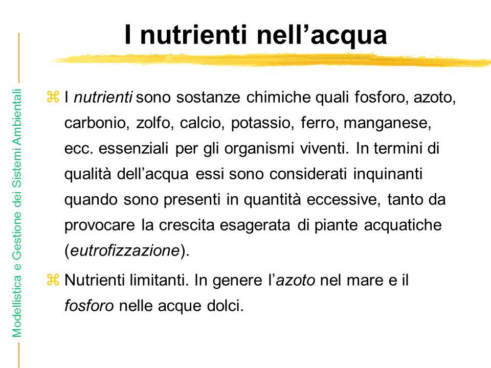 I nutrienti nell'acqua