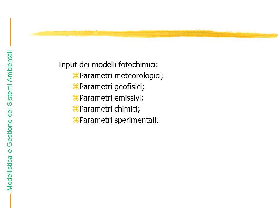 Input dei modelli fotochimici: