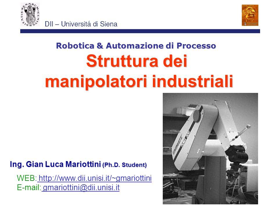Robotica & Automazione di Processo manipolatori industriali