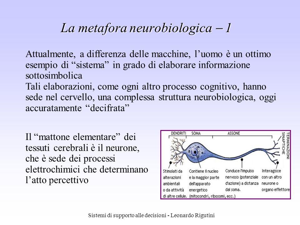 La metafora neurobiologica  1