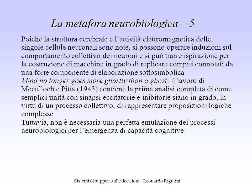 La metafora neurobiologica  5