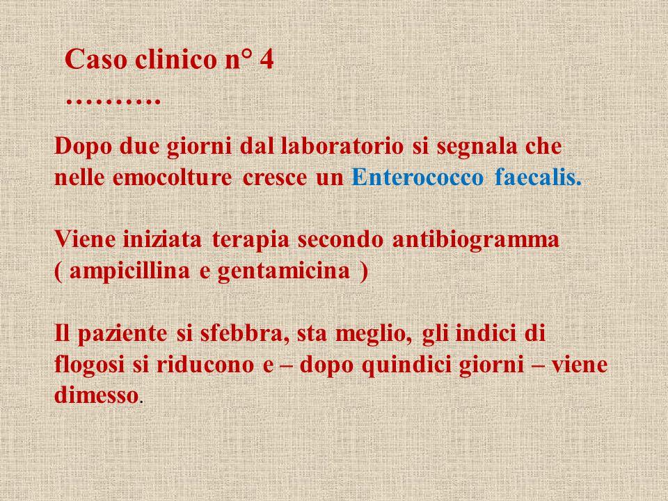 Caso clinico n° 4 ………. Dopo due giorni dal laboratorio si segnala che nelle emocolture cresce un Enterococco faecalis.