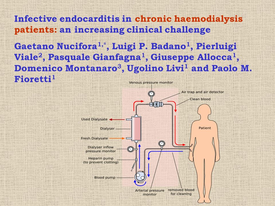 Infective endocarditis in chronic haemodialysis patients: an increasing clinical challenge
