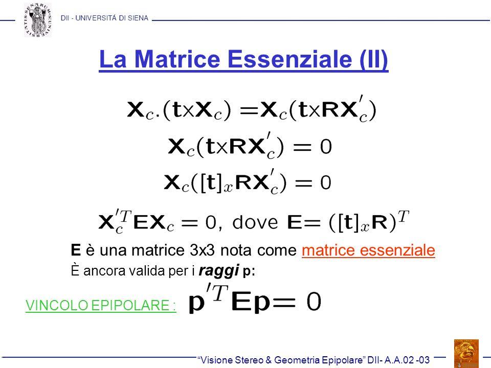 La Matrice Essenziale (II)