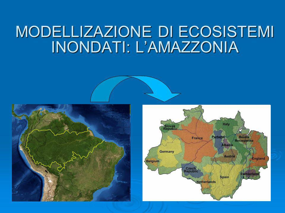 MODELLIZAZIONE DI ECOSISTEMI INONDATI: L'AMAZZONIA