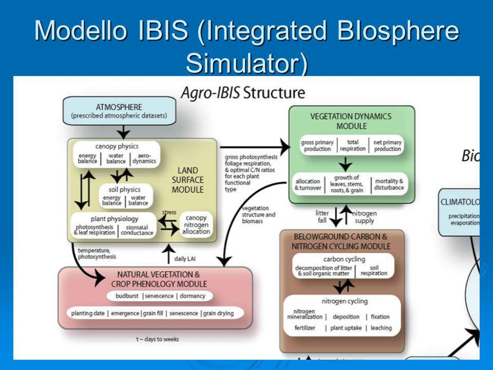 Modello IBIS (Integrated BIosphere Simulator)