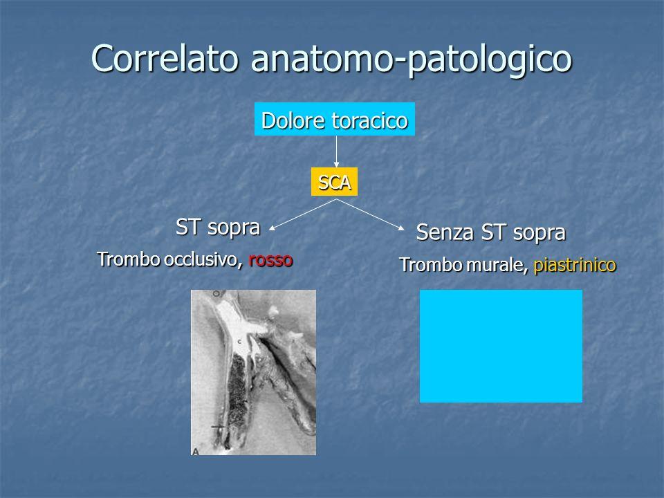 Correlato anatomo-patologico