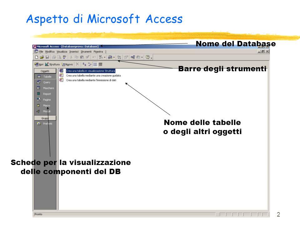 Aspetto di Microsoft Access