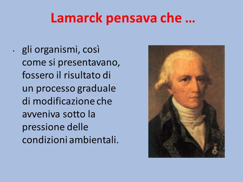 Lamarck pensava che …