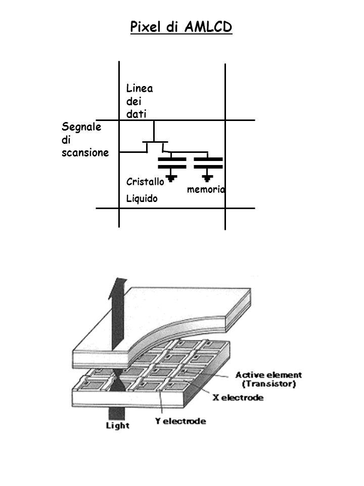Pixel di AMLCD Linea dei dati Segnale di scansione Cristallo Liquido