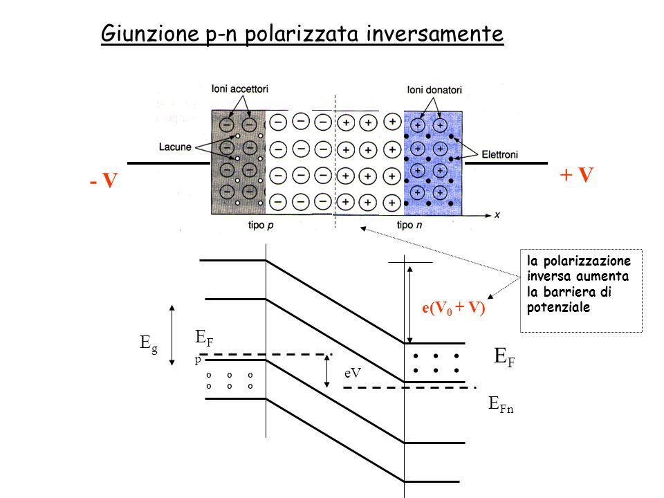 . . . . . . Giunzione p-n polarizzata inversamente + V - V EF EFp Eg