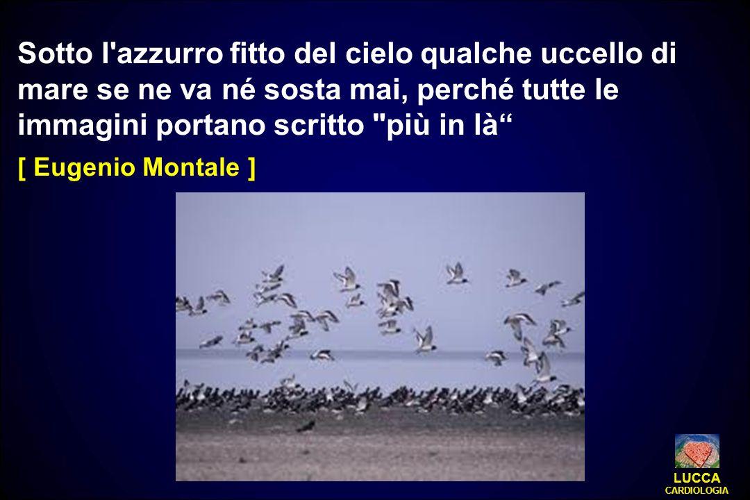 Sotto l azzurro fitto del cielo qualche uccello di mare se ne va né sosta mai, perché tutte le immagini portano scritto più in là