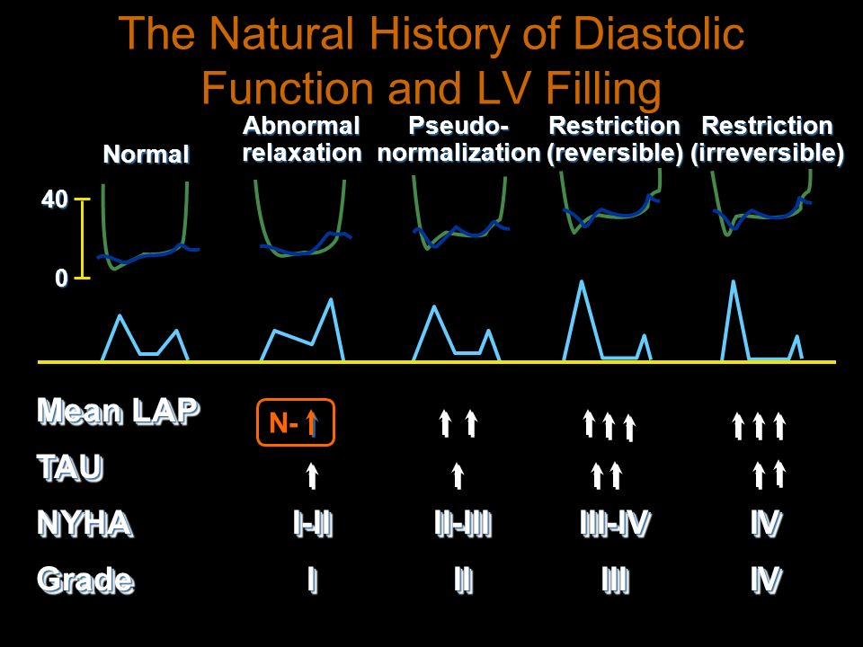 The Natural History of Diastolic Function and LV Filling