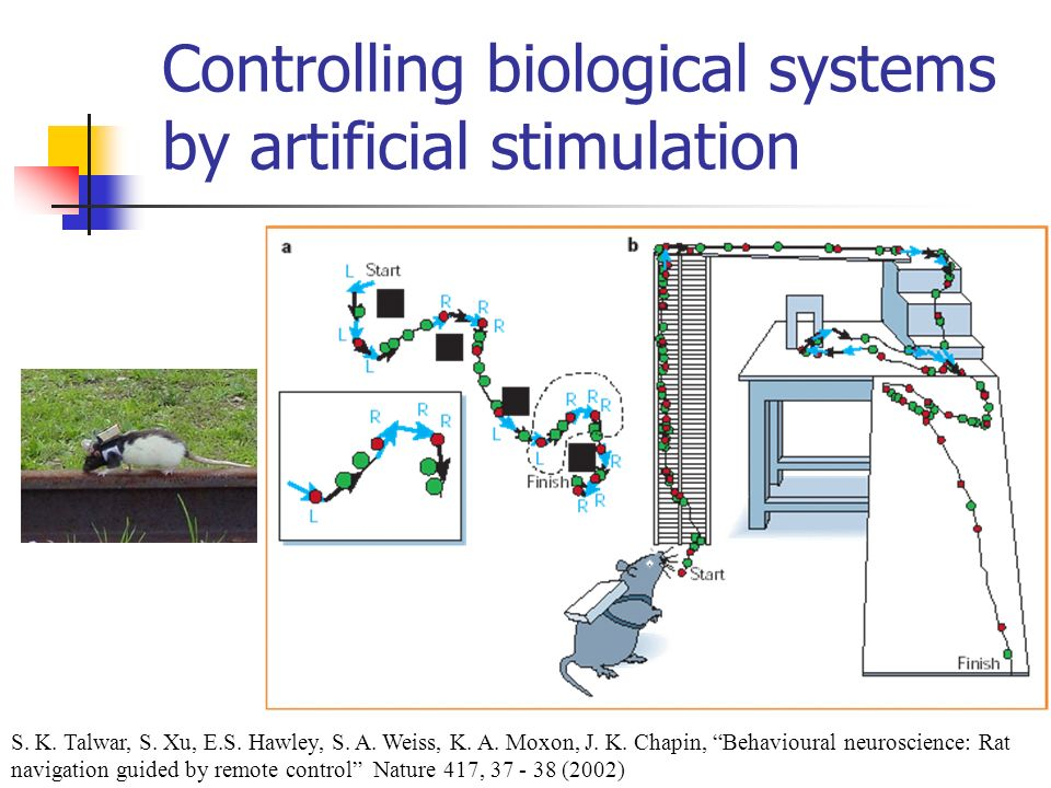 Controlling biological systems by artificial stimulation