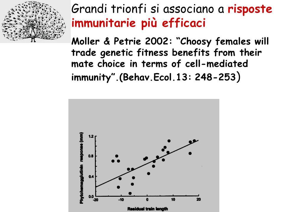 Grandi trionfi si associano a risposte immunitarie più efficaci