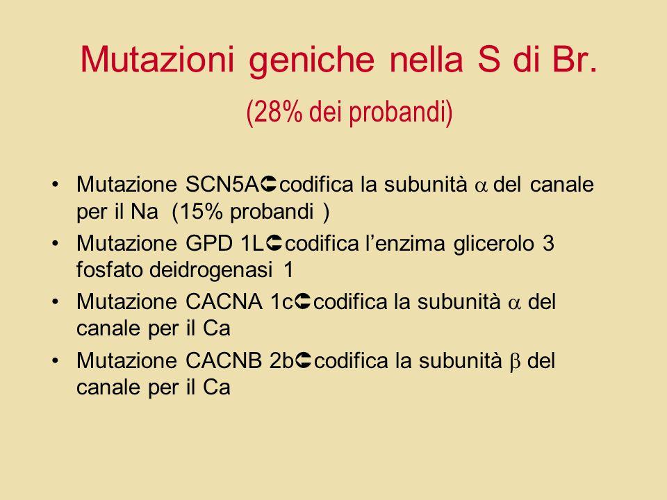 Mutazioni geniche nella S di Br.